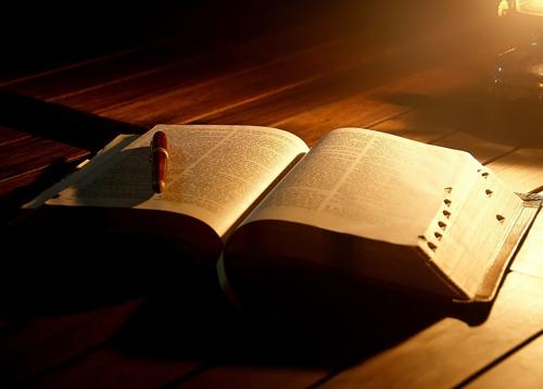 Znalezione obrazy dla zapytania nosze Biblia